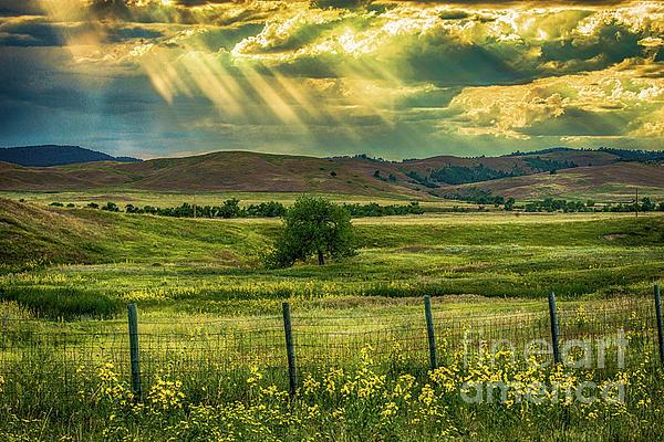 Barbara Hayton - Dramatic Sky Over Custer State Park
