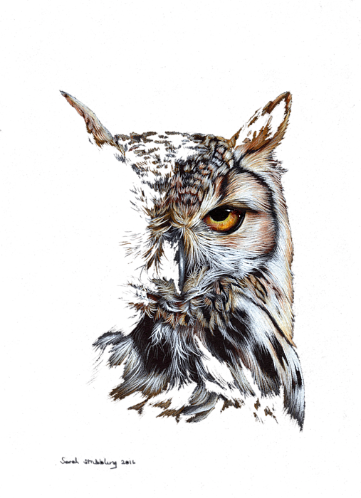 Eagle Owl At Twilight Greeting Card For Sale By Sarah Stribbling