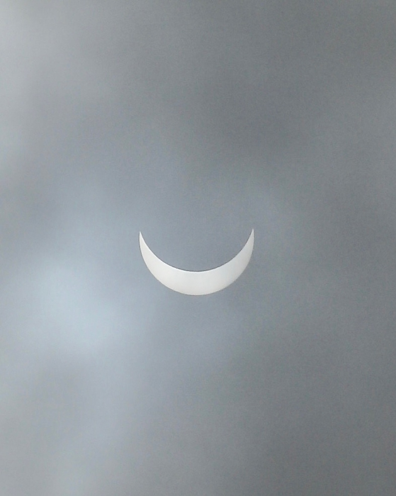 DUG Harpster - Eclipse-6