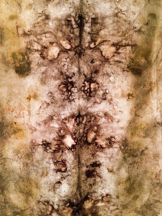 Patti Shonek - Eco Dyed Tapestry on Cotton