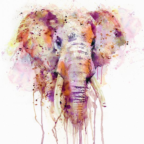 Marian Voicu - Elephant