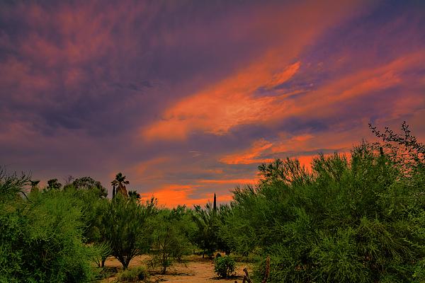 Evening Sky H53 Photograph