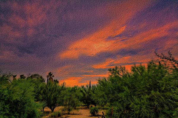Evening Sky Op54 Photograph