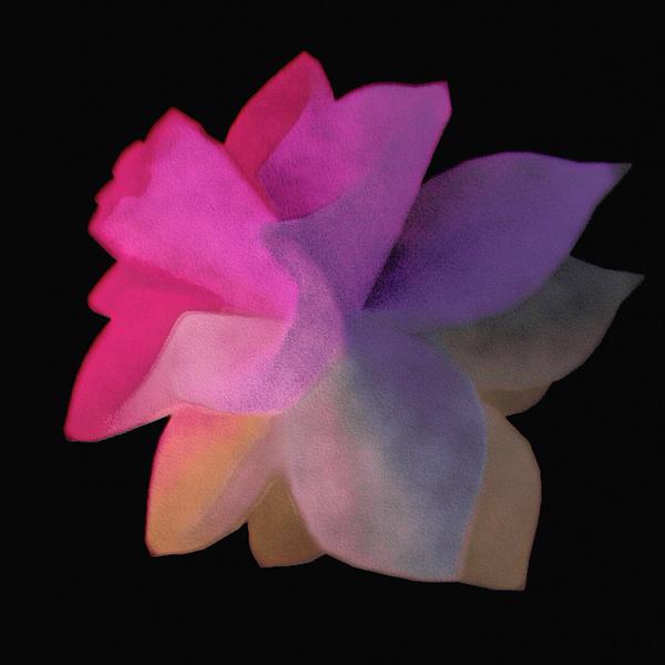 Susan Maxwell Schmidt - Exoplanet Bloom