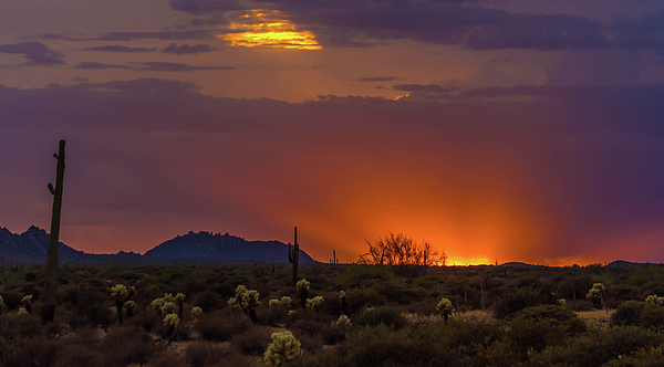 Bill Kabat - Fabulous Arizona Sunsets