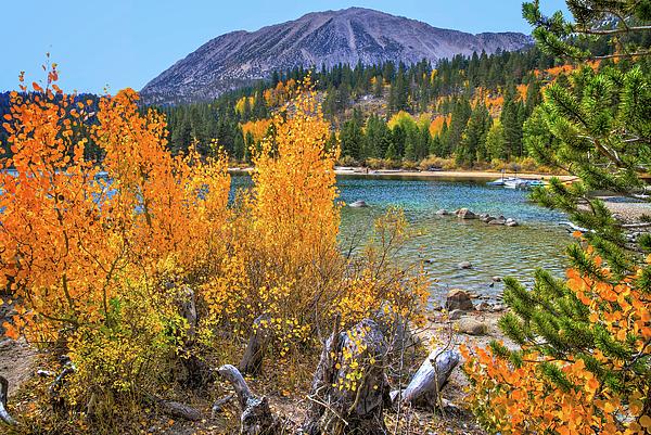 Lynn Bauer - Fall Along the Shore of Rock Creek Lake