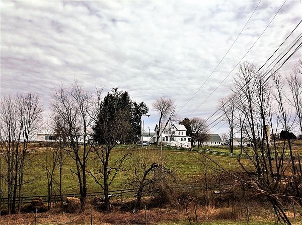 Debra Lynch - Farm In Maryland