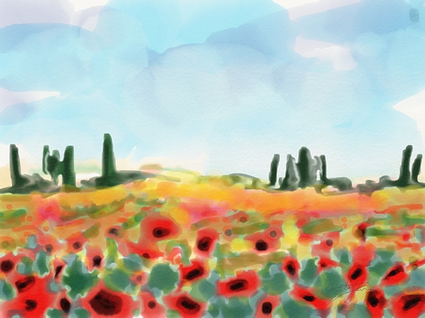 Cristina Stefan - Field with poppies