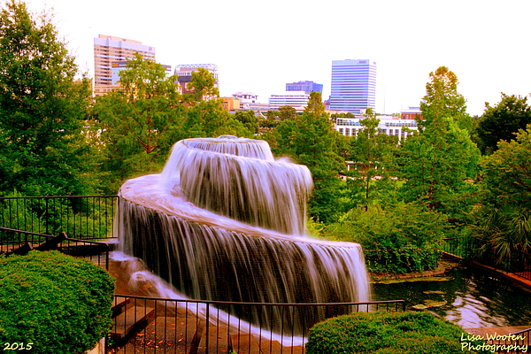 Lisa Wooten - Finlay Park Fountain Summertime