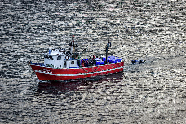 Liesl Walsh - Fishing Boat Arriving in Funchal, Madeira, Portugal