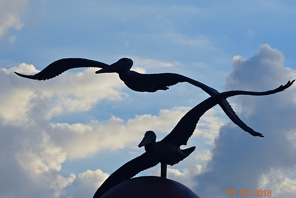Ernest Litterick - Flight