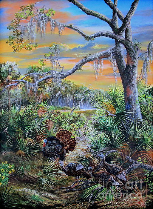 Daniel Butler - Florida Osceola turkeys- Headed to Roost