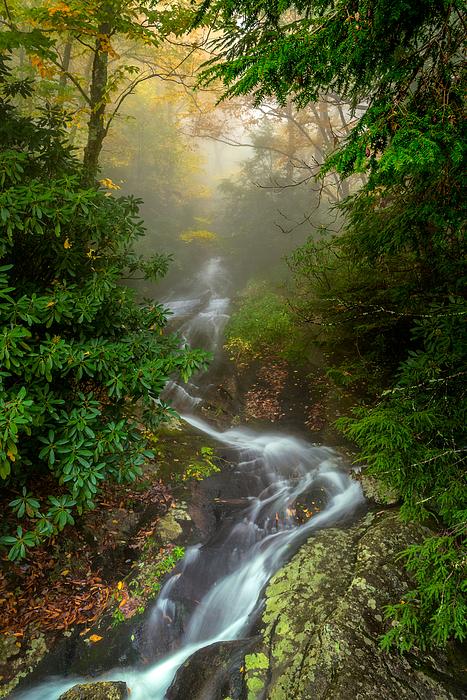 Mike Koenig - Foggy Autumn Cascades
