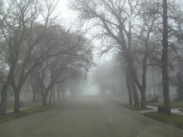 Delynn Addams - Foggy Foggy Street