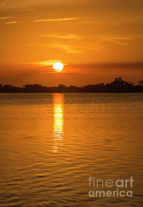 Edie Ann Mendenhall - Forever Orange Sunset Lagoon