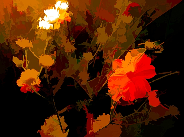 Debra Lynch - Fourth In Series Summer Floral Abstract