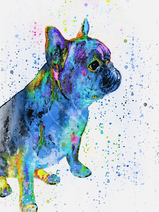 Barbara Chichester - French Bulldog In Art