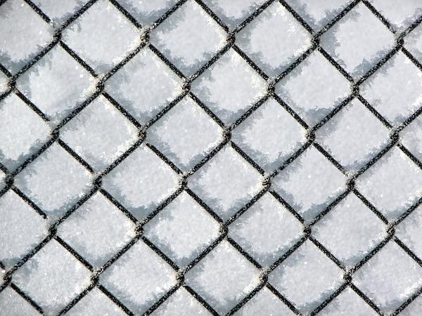 Frosty Fence Photograph
