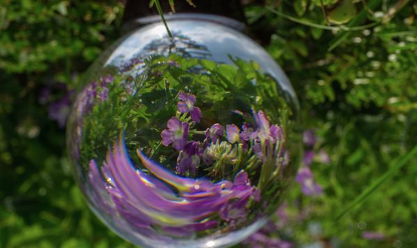 Linda Howes - Garden Globe