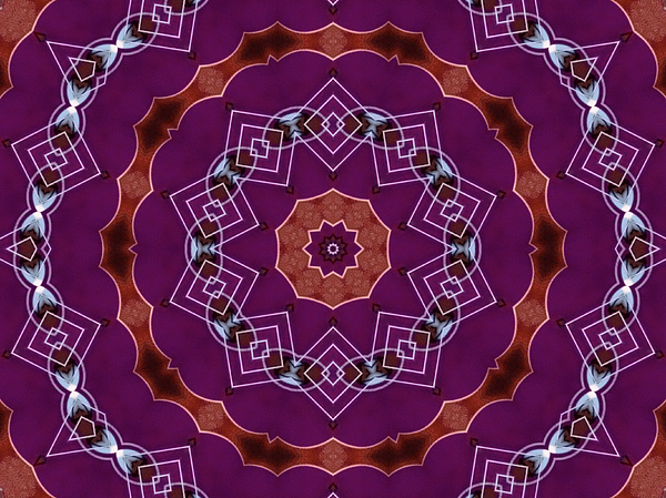 Geometric Flower Mandala Digital Art