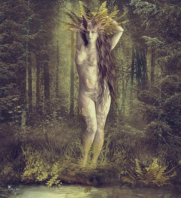 Ali Oppy - Ghost of fern forest