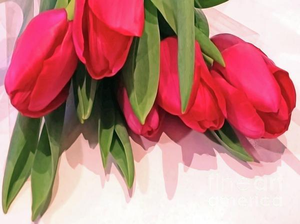 Jasna Dragun - Glossy Tulips