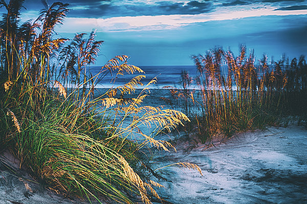 Dan Carmichael - Glowing Dunes Before Sunrise on the Outer Banks