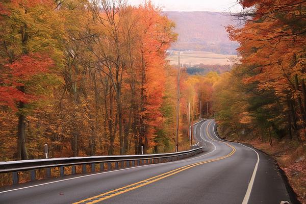Lori Deiter - Gold Mine Road in Autumn