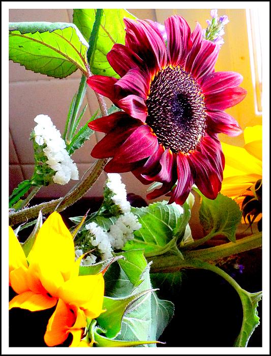 Rebecca Malo - Gorgeous Flowers