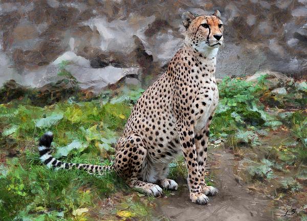 Sergey Lukashin - Graceful cat