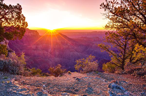 Scott McGuire - Grand Canyon Sunrise