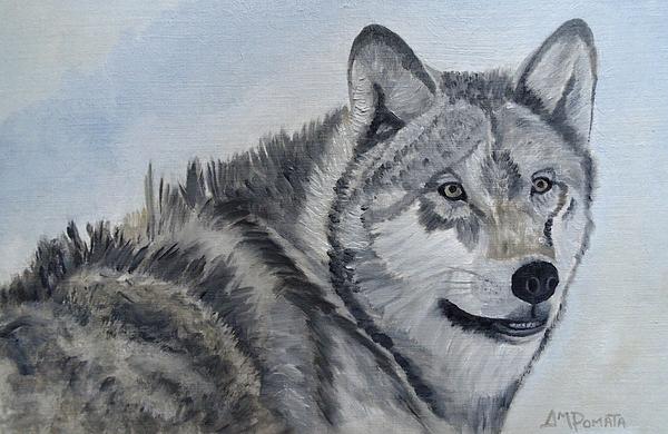 Angeles M Pomata - Gray Wolf