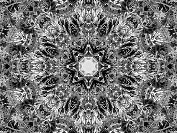 Nancy Pauling - Grey and White Kaleidoscope