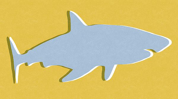 Grey And Yellow Shark Mixed Media
