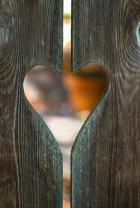 Terry Davis - Harden not your heart