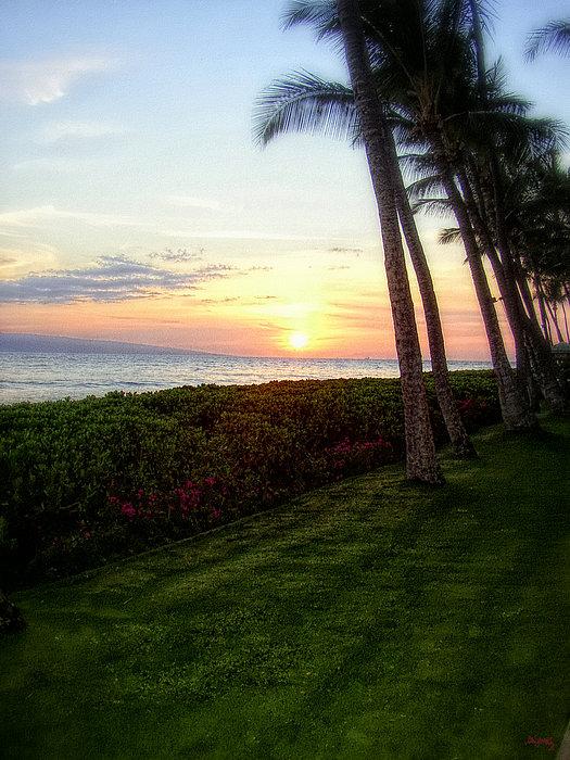 Glenn McCarthy - Hawaiian Tropical Sunset