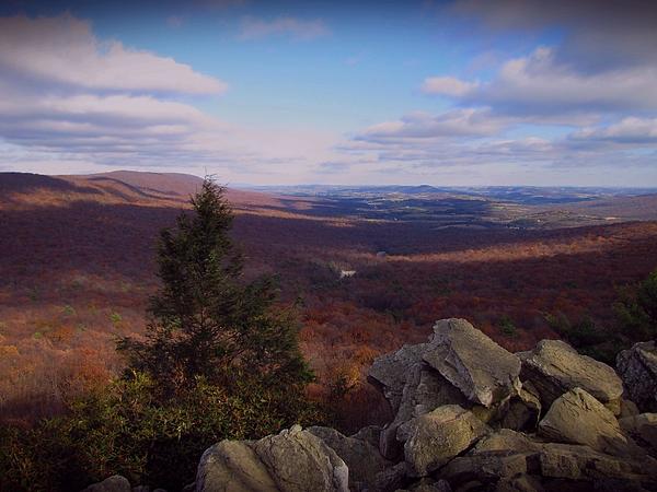 David Dehner - Hawk Mountain Sanctuary