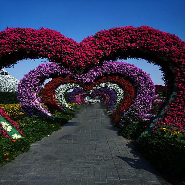 Nilu Mishra - Heart shaped Park