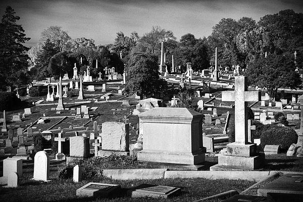 Harry H Hicklin - Hollywood Cemetery