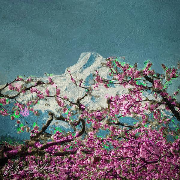 Dale Stillman - Hood Blossoms