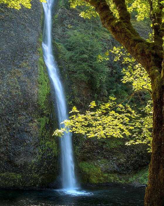 Kristina Rinell - Horse Tail Falls