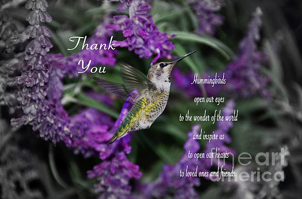 Debby Pueschel - Hummingbird Thank You