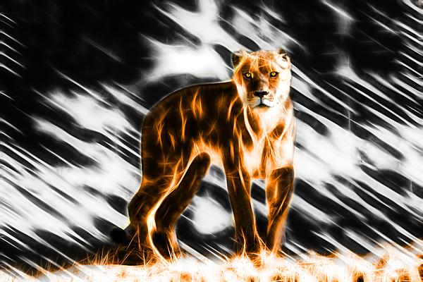 Miroslava Jurcik - I Am The Lioness