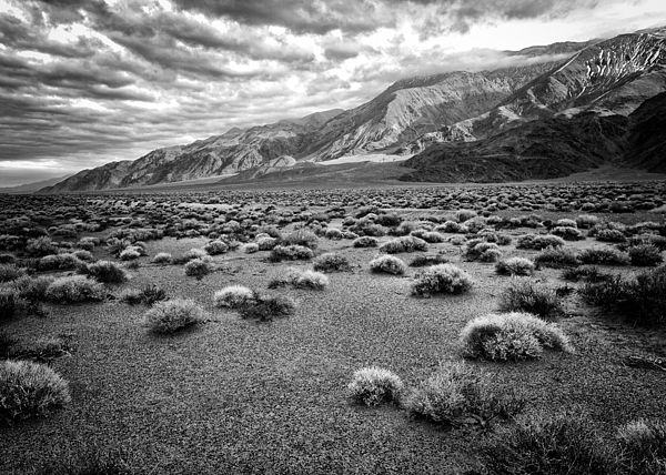 Troy Montemayor - Inyo Mountain Morning in Black and White