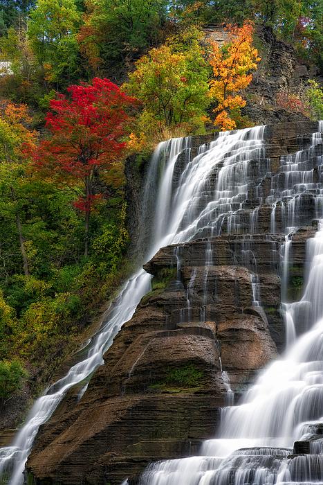 Mark Papke - Ithaca Falls