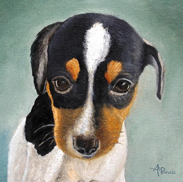 Angeles M Pomata - Jack Russell Terrier Portrait