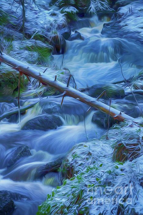 Veikko Suikkanen - January creek