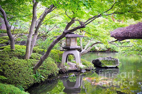Anna Serebryanik - Japanese Gardens