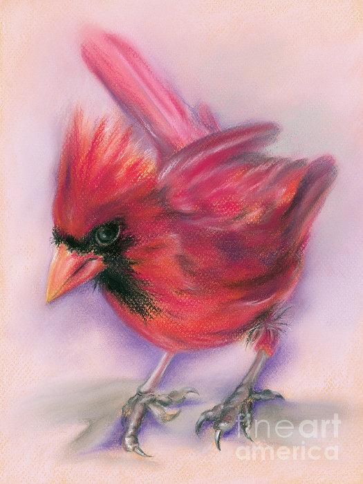 MM Anderson - Jaunty Redbird Cardinal