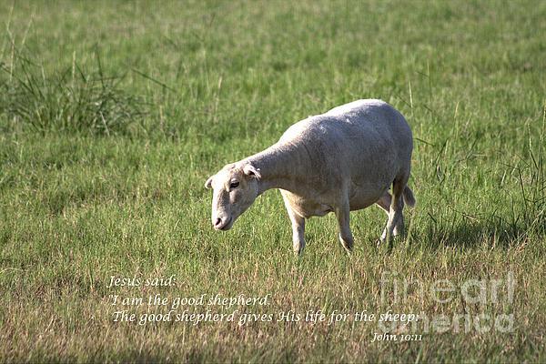 Ella Kaye Dickey - Jesus the Good Shepherd